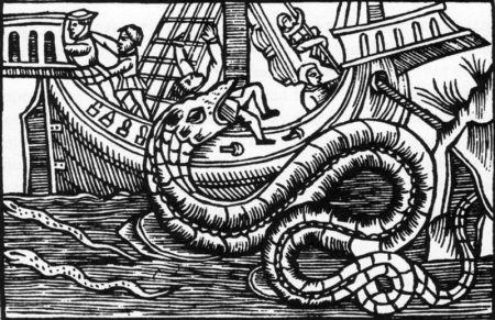 800px-Sea_serpent